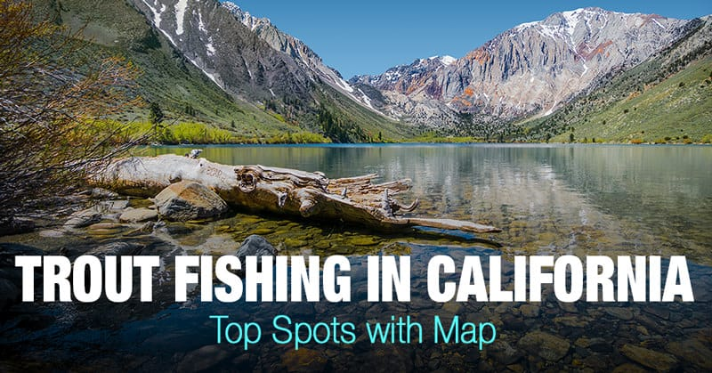 Trout Fishing in California - Top Spots with Map