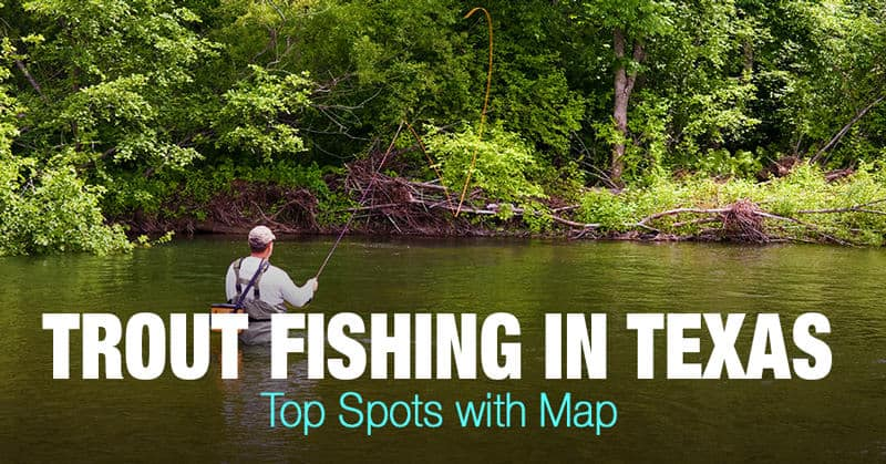 Trout Fishing in Texas - Top Spots with Map