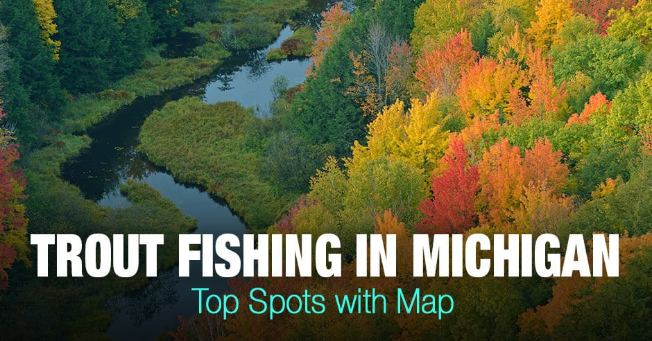 Trout Fishing in Michigan (MI) - Top Spots with Map