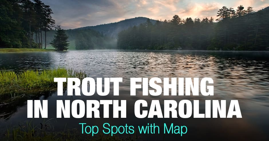 Trout Fishing in North Carolina (NC) - Top Spots with Map