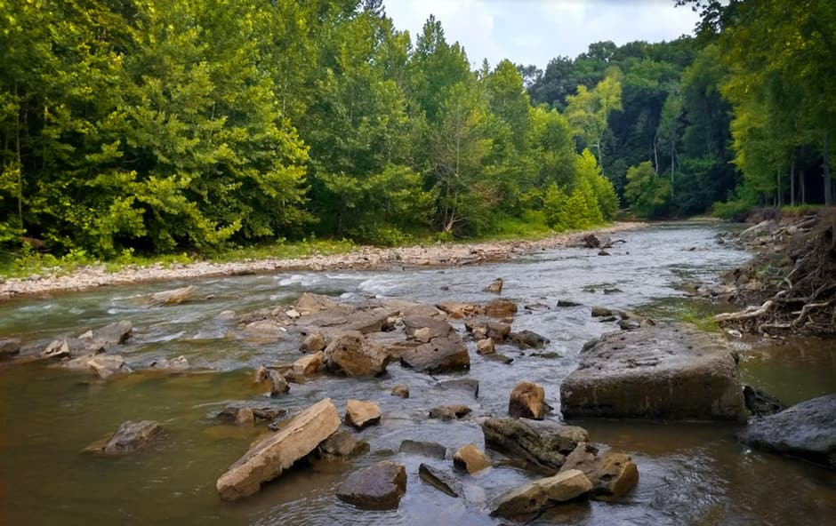 Trout fishing in Otter Creek (KY)